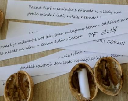 Ořechy jako PFka